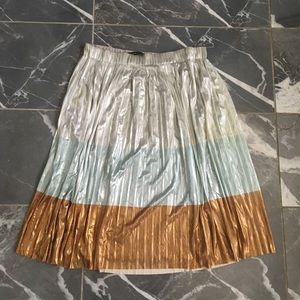 Zara trafuluc collection skirt size small